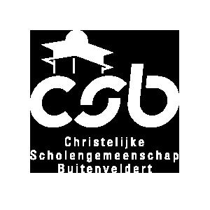 csb_visual_logo_diap