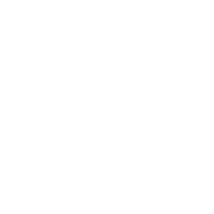ron_wijburg_web_wit