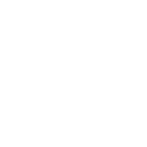 Wit logo van de stad Delft